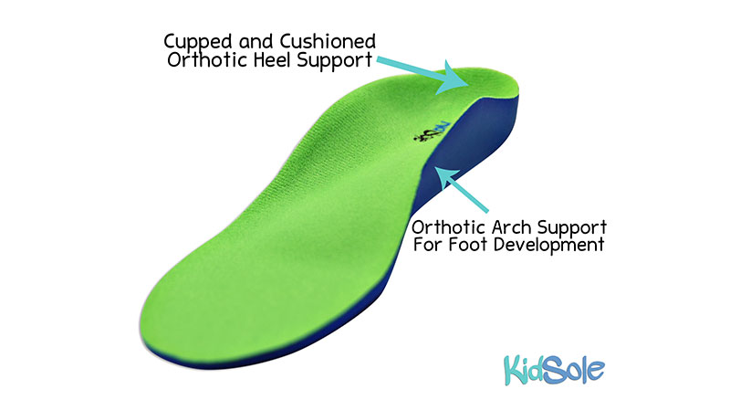 Cupped and Cushioned Orthotic Insoles with Heel Support
